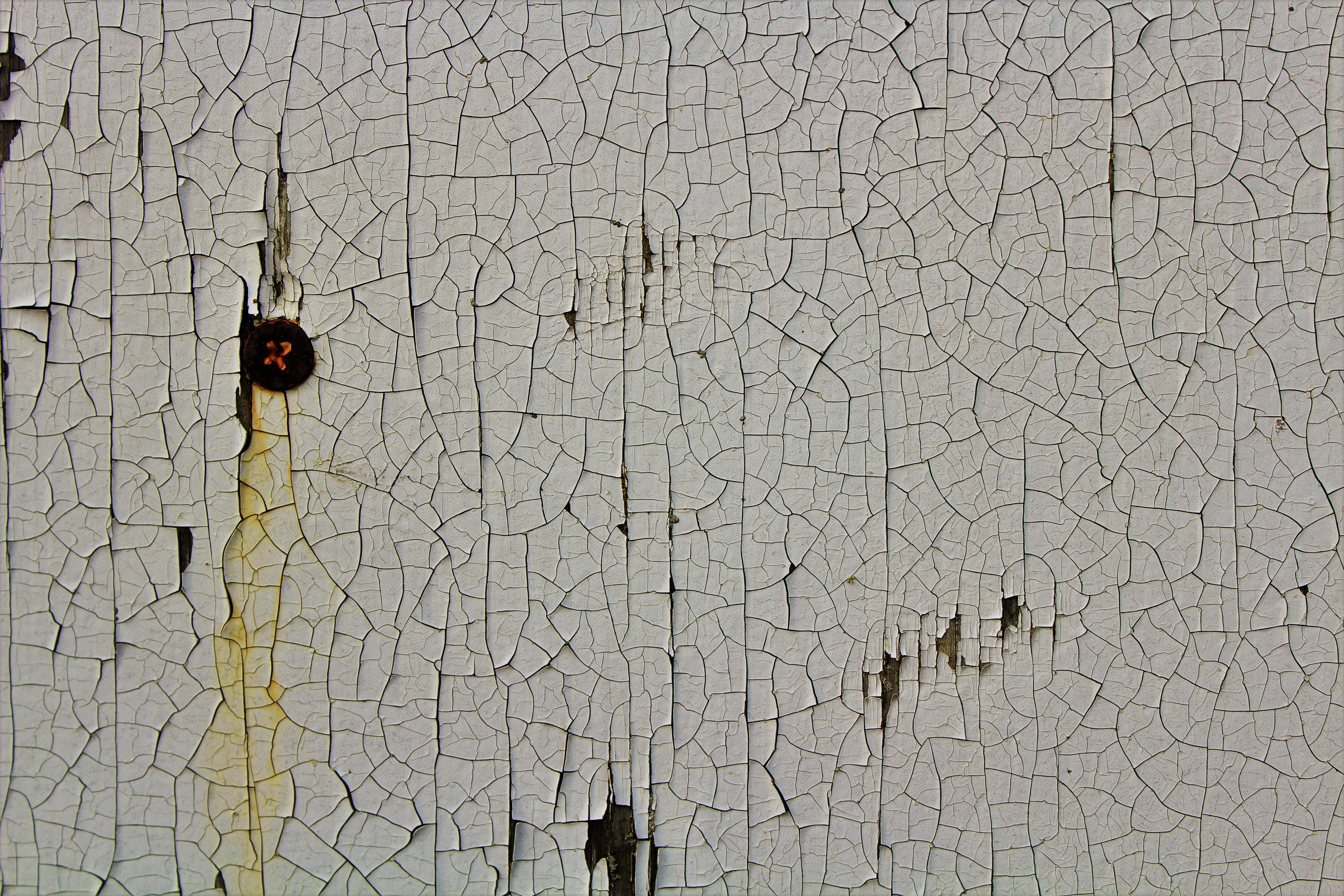Images Gratuites Bois Texture Mur Modèle Sol Carte