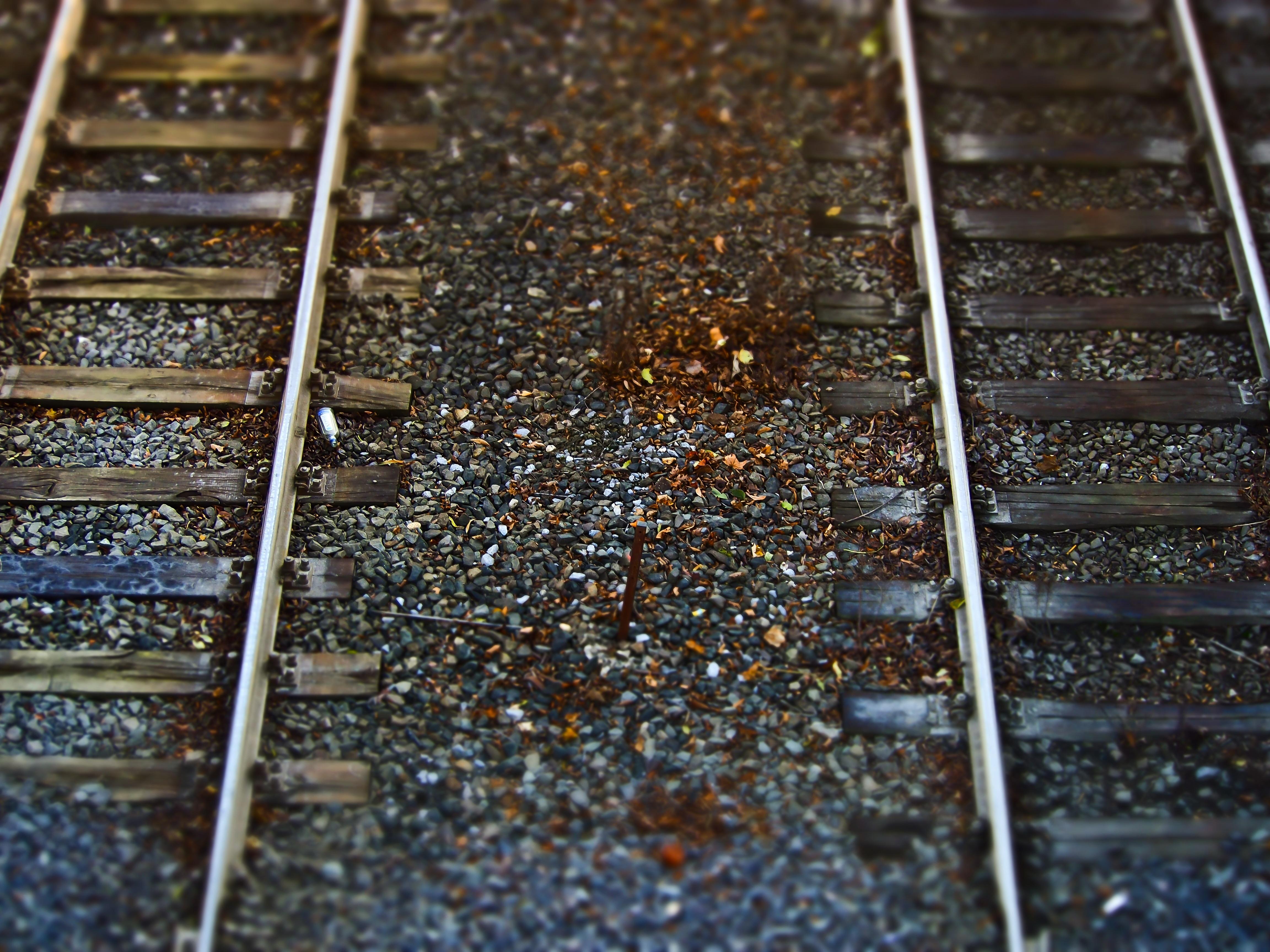 Free Images : wood, railway, leaf, soil, stones, gravel