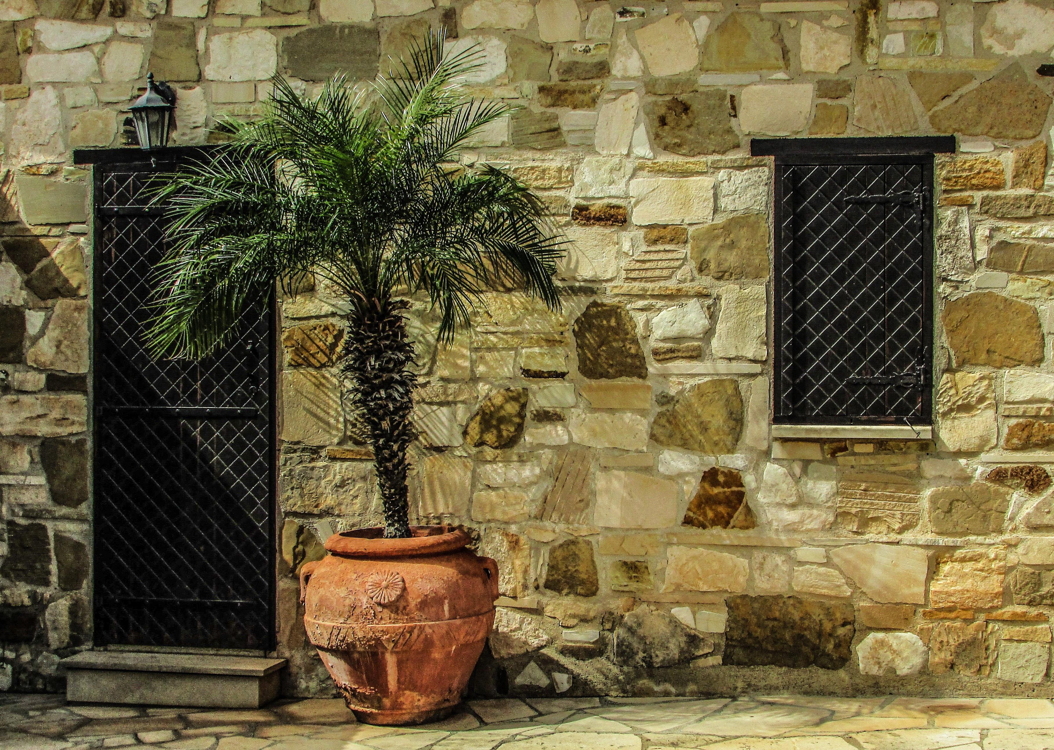 Steen In Interieur : Gratis afbeeldingen : hout muur steen interieur ontwerp kunst