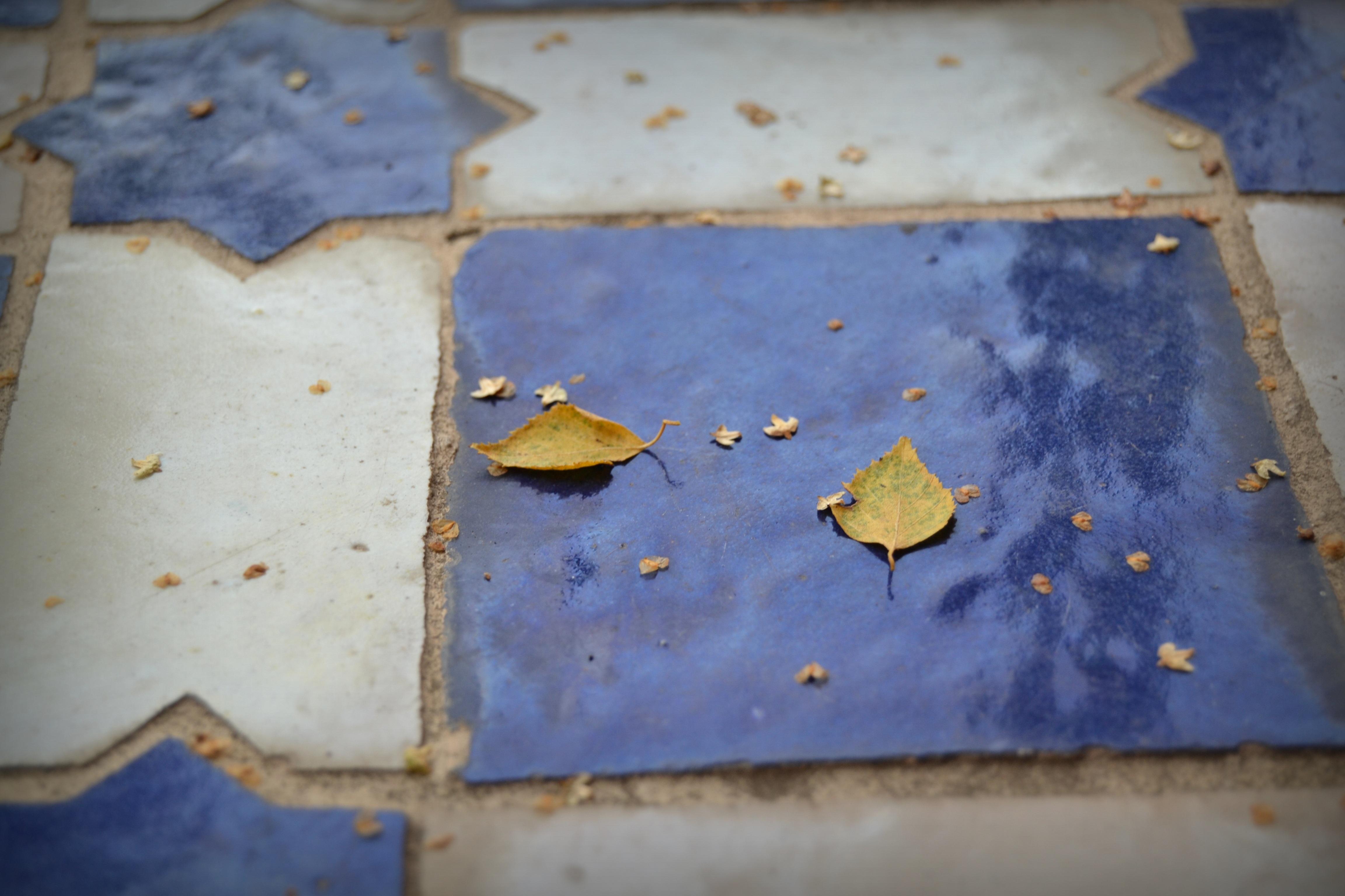 Immagini belle legna bianca terra pavimento parete colore