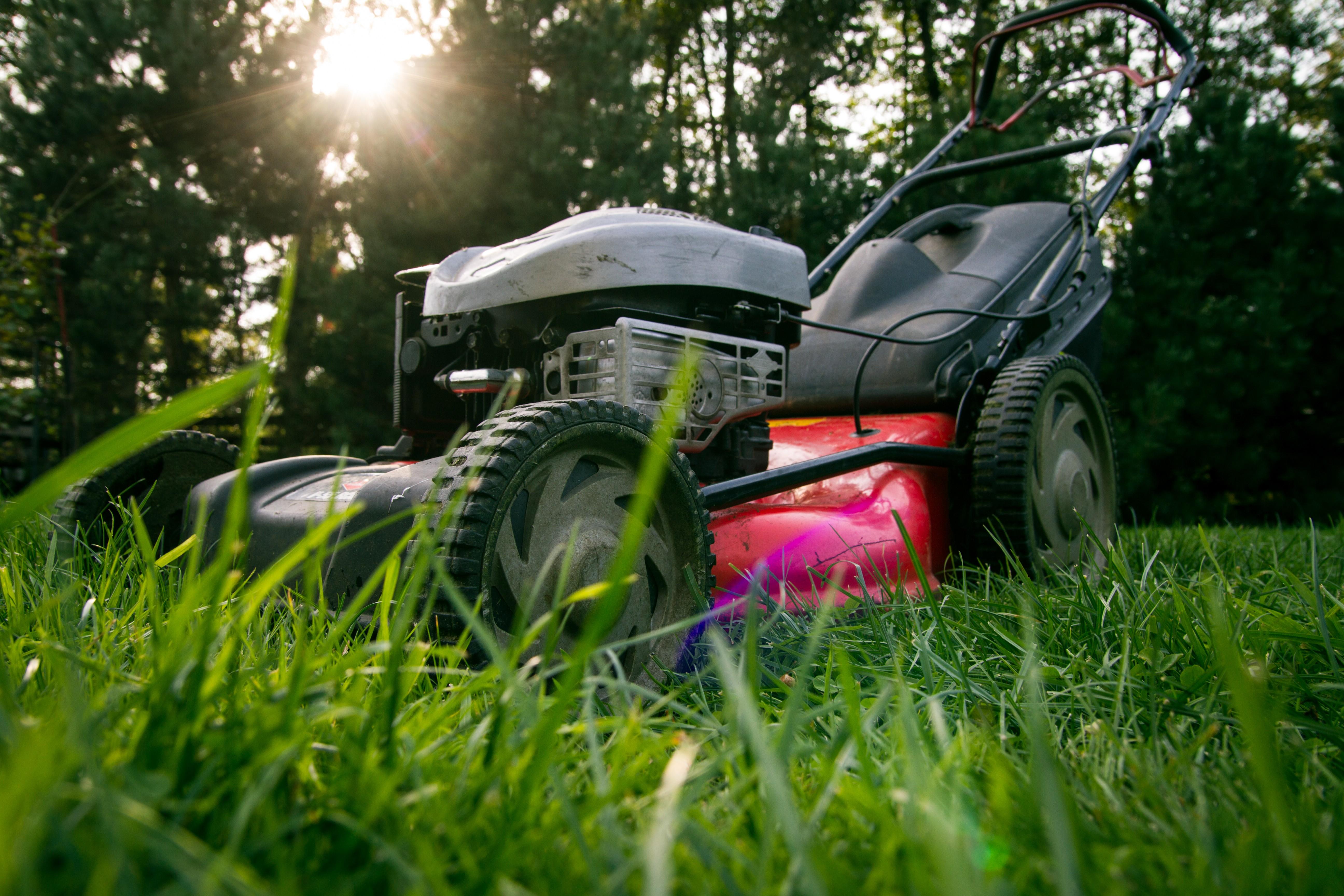 3 Wheel Car >> Banco de imagens : trabalhos, campo, gramado, roda, verão ...