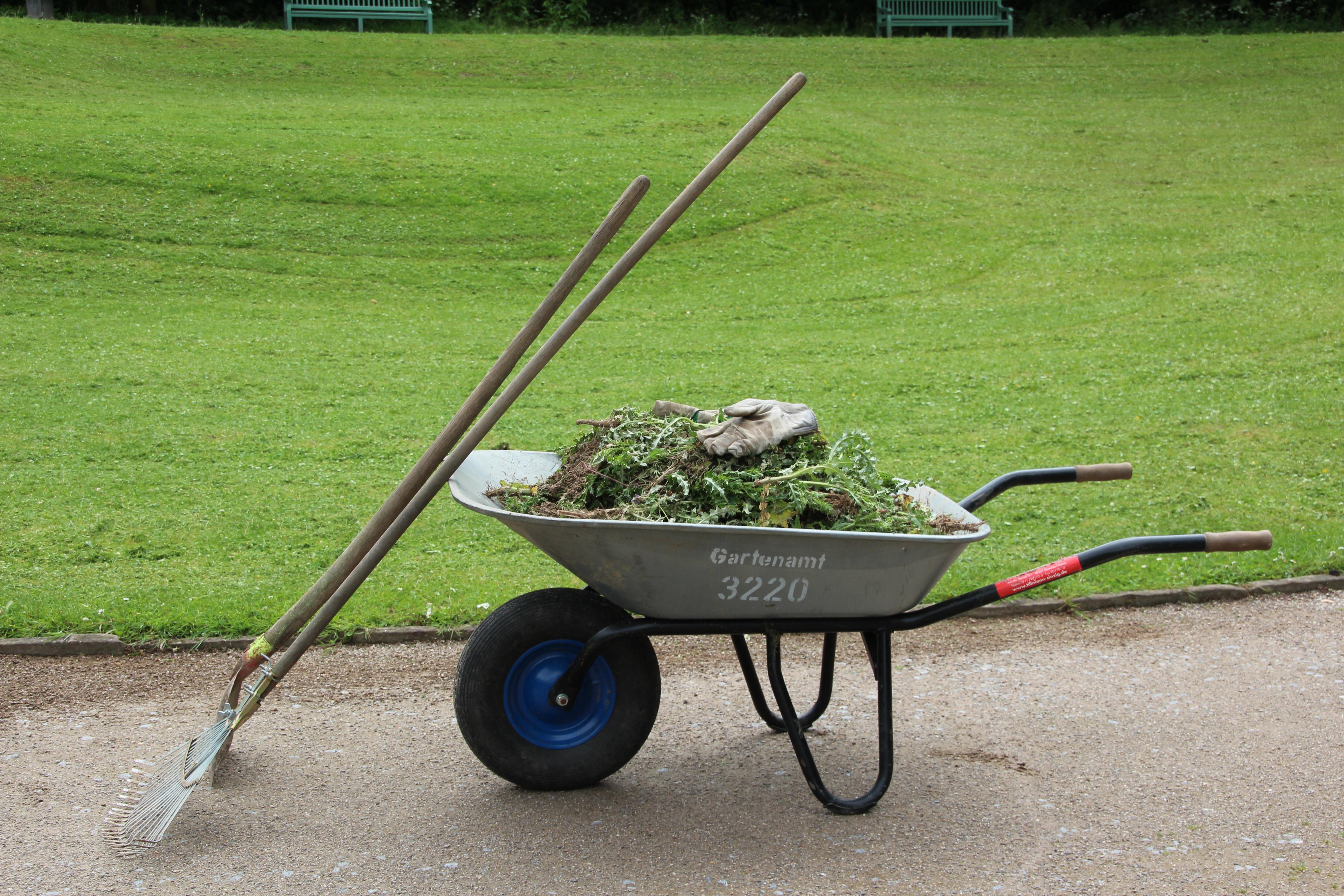 Work Grass Lawn Cart Tool Transport Vehicle Garden Gardening Wheelbarrow  Gardening Equipment Faceplate Land Vehicle