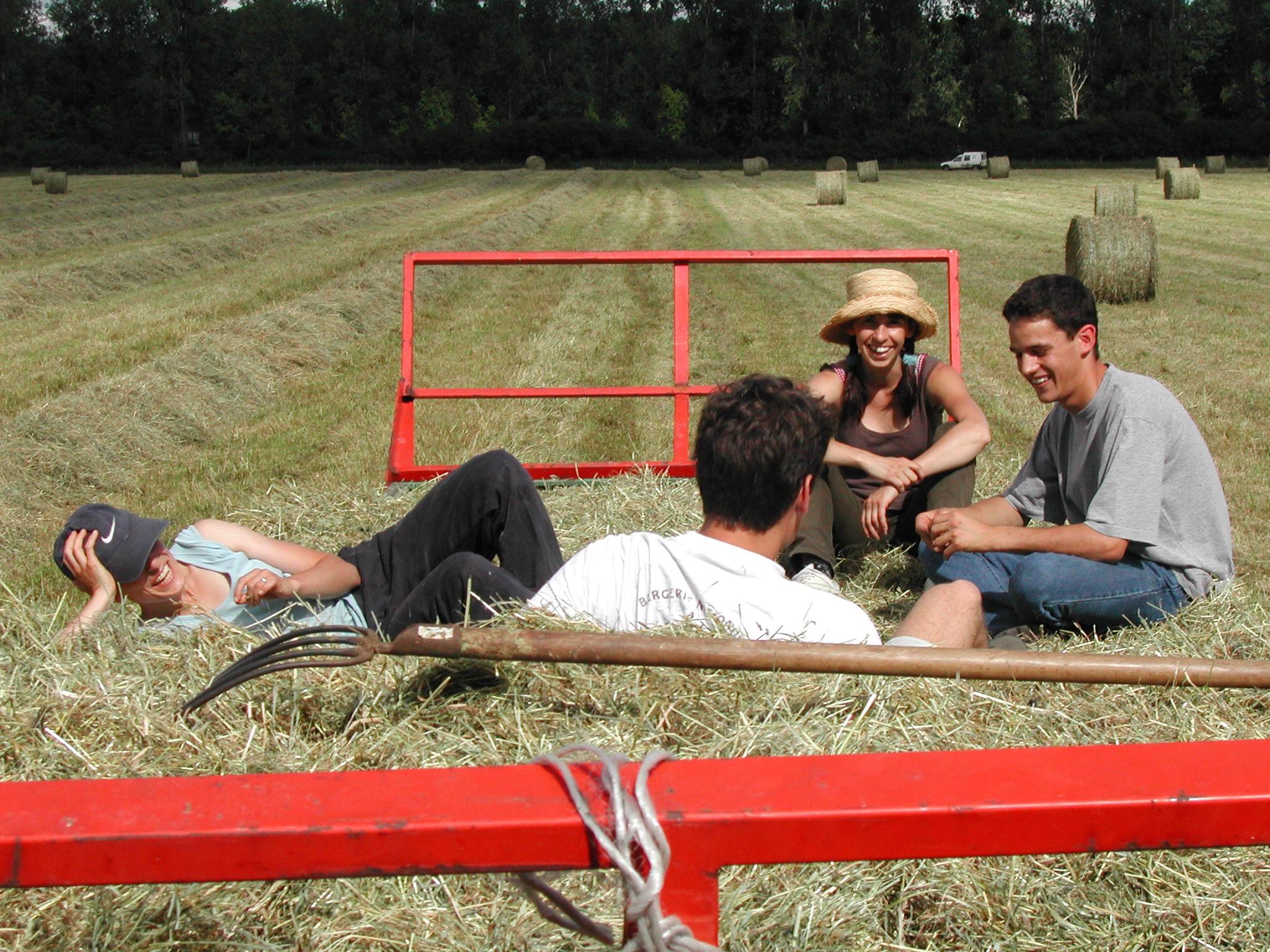 Gambar Kerja Alam Outdoor Jerami Bidang Tanah Pertanian Pedesaan Muda