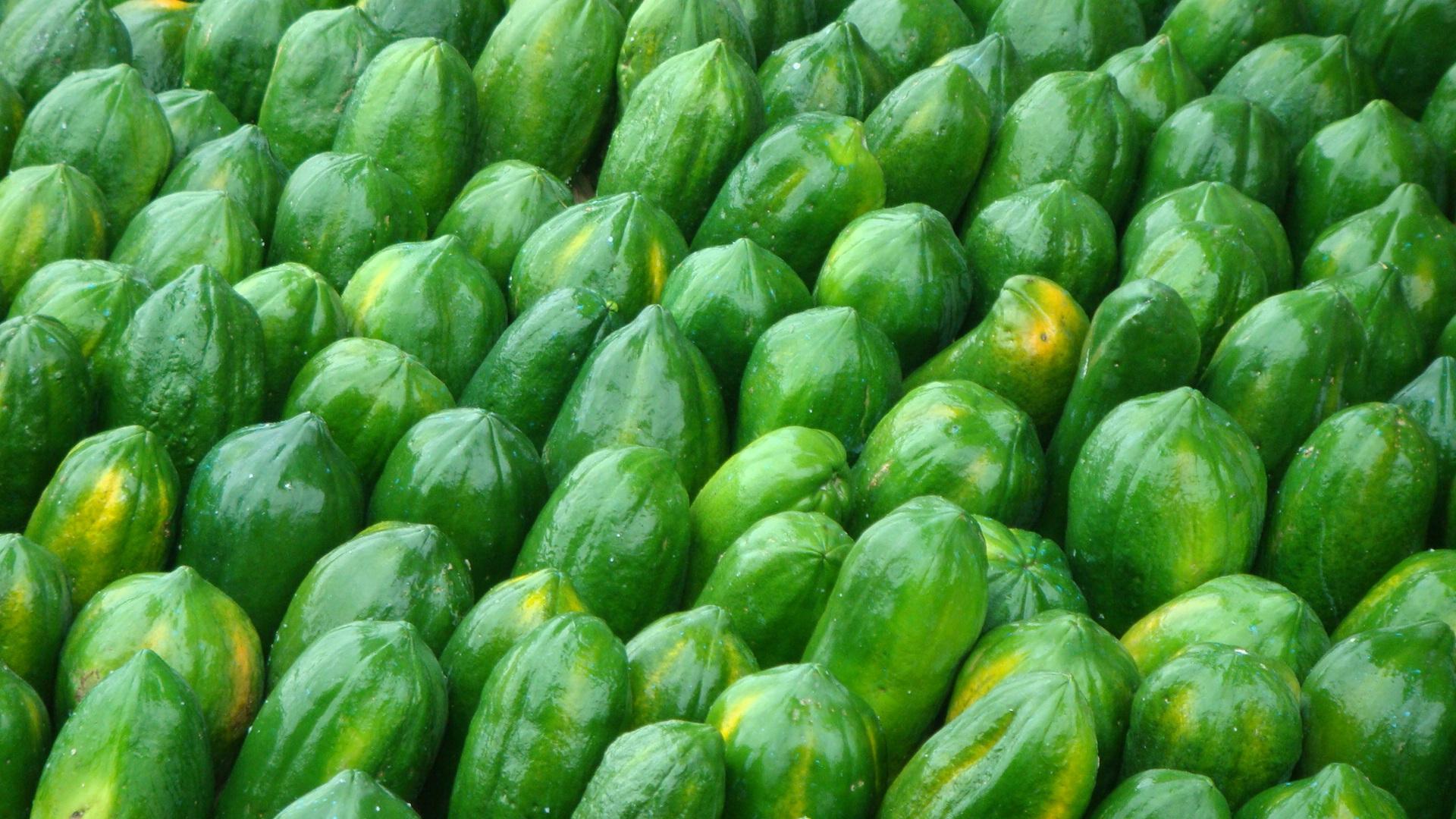 Kostenlose foto : Arbeit, Frucht, Blume, Lebensmittel, Grün, Ernte ...