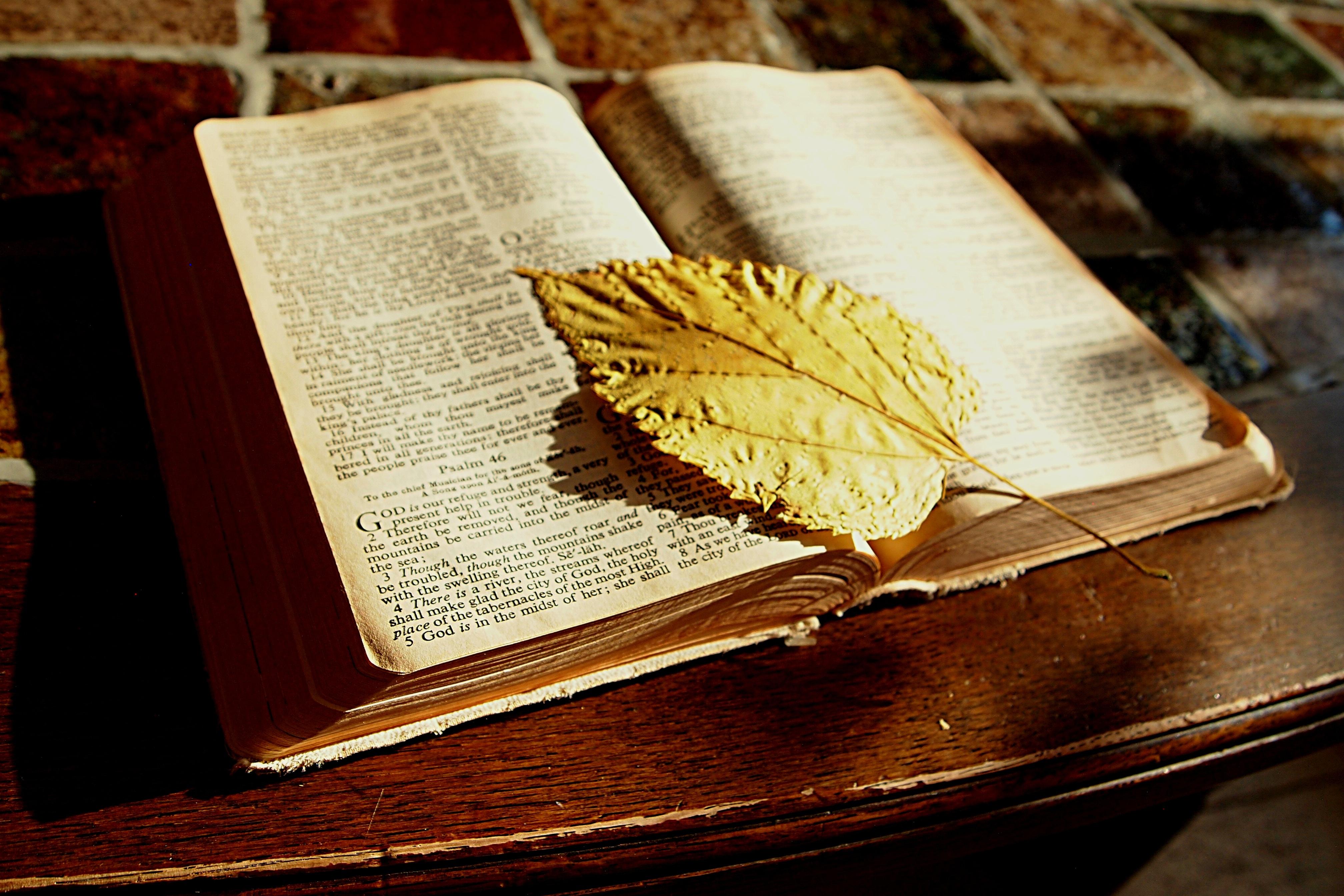 Fotos gratis : escritura, mesa, libro, leer, madera, hoja, cristiano ...