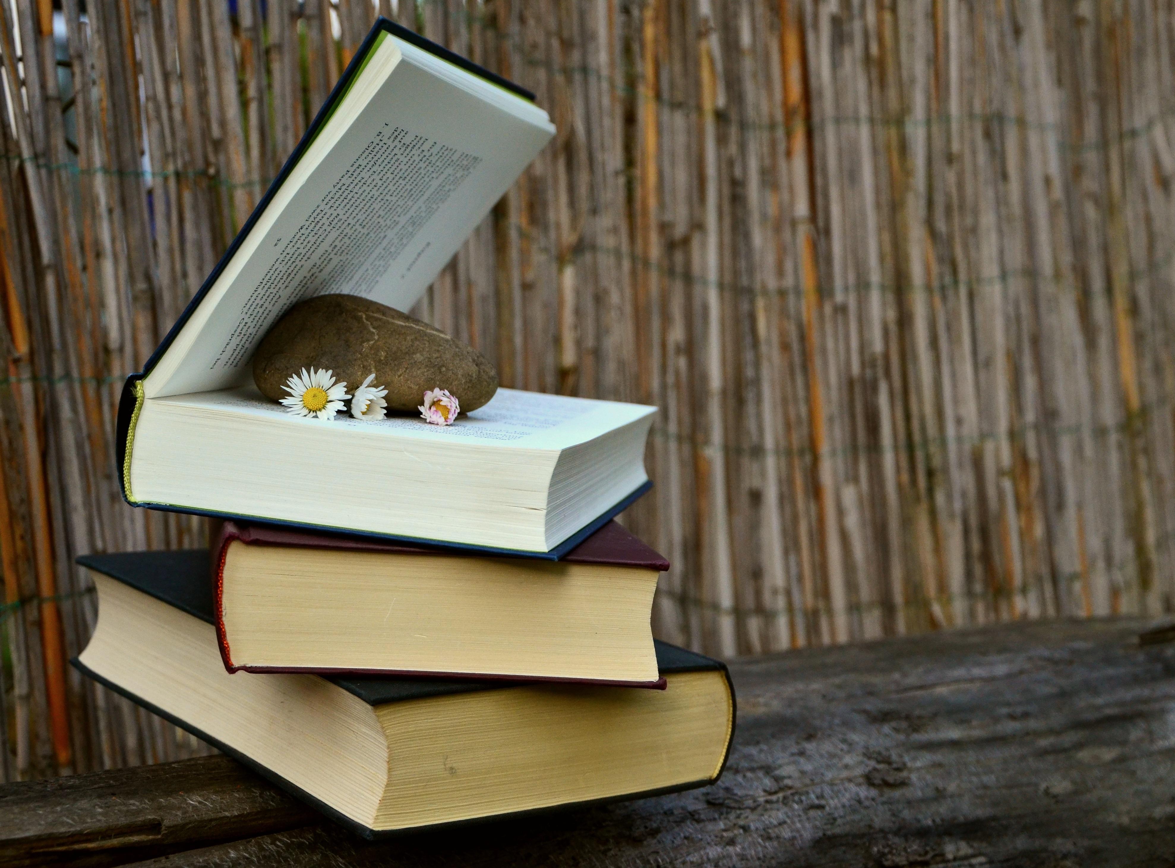 Книги литература чтение картинки
